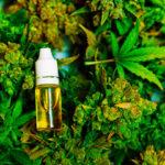 Cannabis incide sul rischio psicosi, finalmente la verità su questa droga. Lo dimostra uno studio