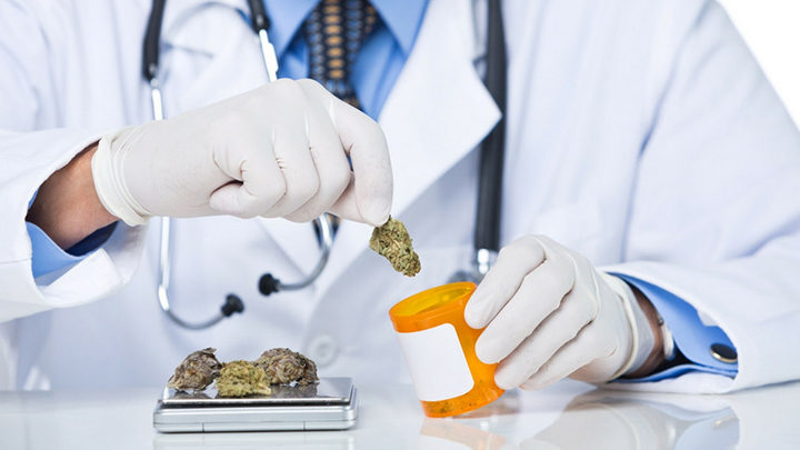 cannabis terapeutica medica legale