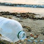 Microplastiche la plastica è pericolosa anche per la respirazione