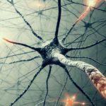 Sclerosi Multipla sintomi: Come riconoscerla, cause e cure