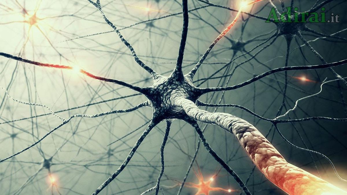 sclerosi multipla le cure le cause e come riconoscerla