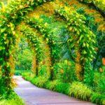 Bonus Verde 2020 sarà nella Manovra, lo assicura Bellanova