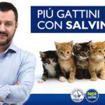 Matteo Salvini ultime news su politica e contatti con M5S e PD