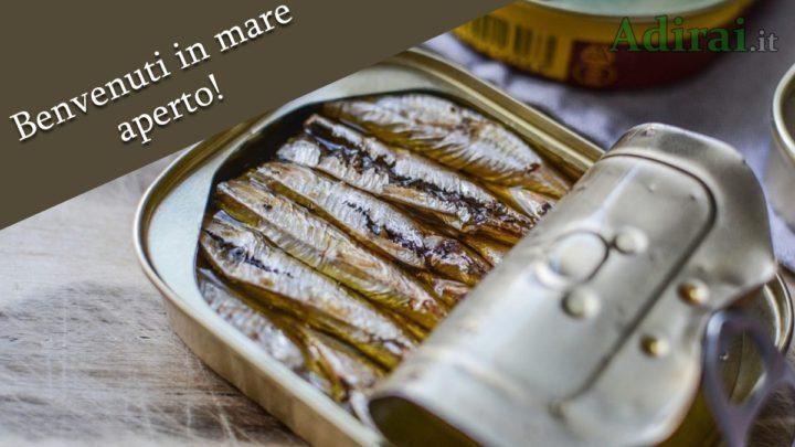 manifesto sardine movimento