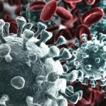 Coronavirus: Come riconoscere i sintomi del virus cinese